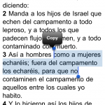 Santa Biblia iPhone 3